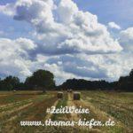 Thomas Kiefer - ZeitWeise - Erntezeit